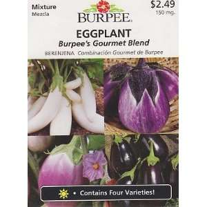 Burpees Gourmet Blend Eggplant Seeds   150 mg: Patio