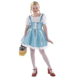 Blue Sparkle Dress Child Costume Size Small: Toys & Games