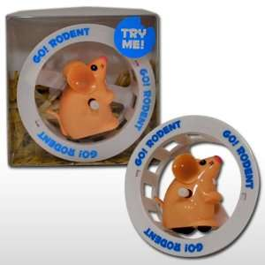 Go! Rodent   Low Maintenance Pet Substitute Toys & Games