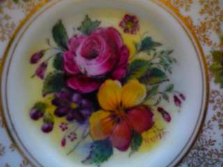 HAND PAINTED Royal Worcester Bone Chintz Tea Cup & Saucer Set