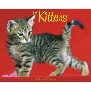 Kittens 2011 Wall Calendar (Just) (9781607551546): Willow