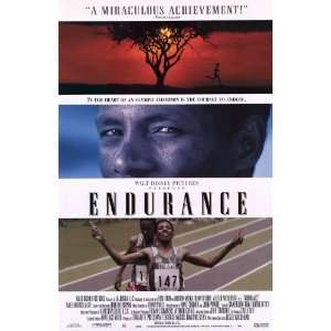 Endurance Movie Poster (11 x 17 Inches   28cm x 44cm