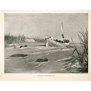 1900 Print Africa Boat People Man Woman Hippo Hippopotamus Water Grass