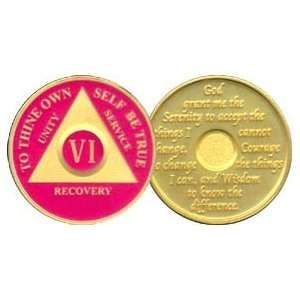 6 Year 24K Gold Plated AA Birthday   Anniversary Recovery