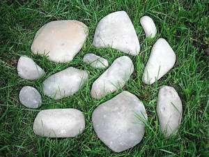Plastic rock facing plaster concrete 12 asst molds