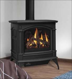 GDS60N Direct Vent Cast Iron Natural Gas Stove Painted Black
